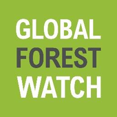 logo Global Forest Watch